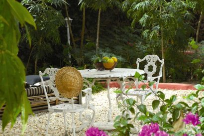 Tranquil gardens at Hibiscus House