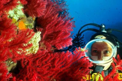 Diving in Corsica - © imagebroker / Alamy