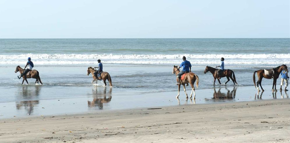 Horse-riding on Kotu beach