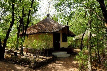 Standard rooms in gardens at Keur Saloum, Sine Saloum Delta, Senegal