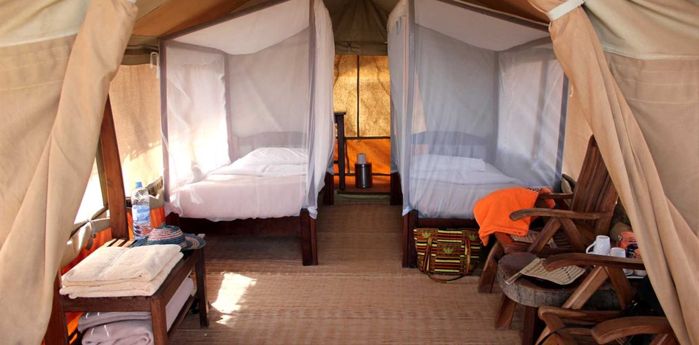 Safari tent interior at Chimp Rehabilitation Project Camp