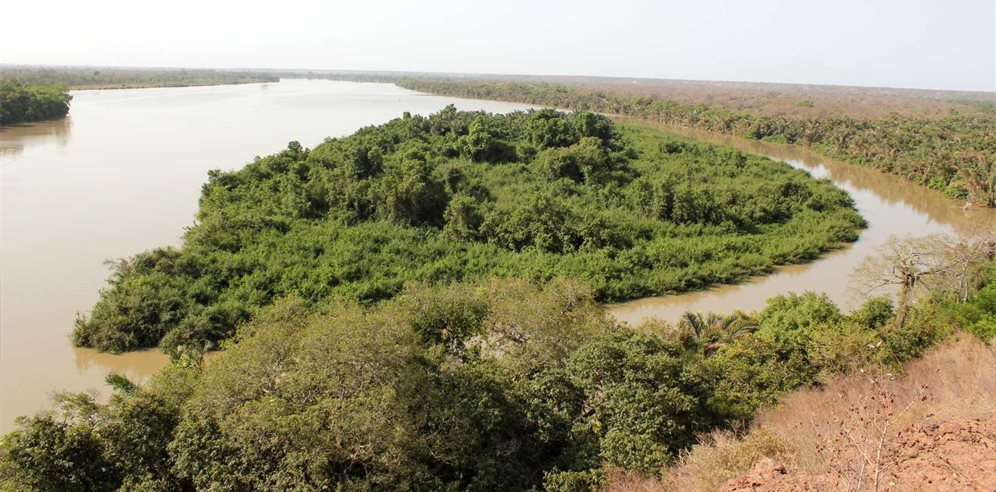 River Gambia National Park near Chimp Rehabilitation Project Camp
