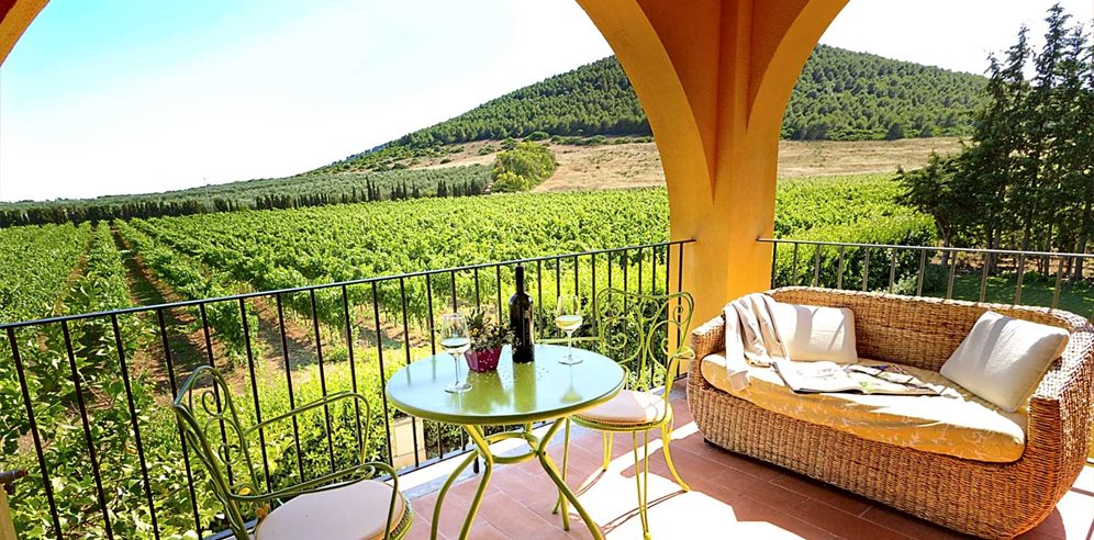 Terrace and Vineyard - Wine Resort Leda d'Ittiri