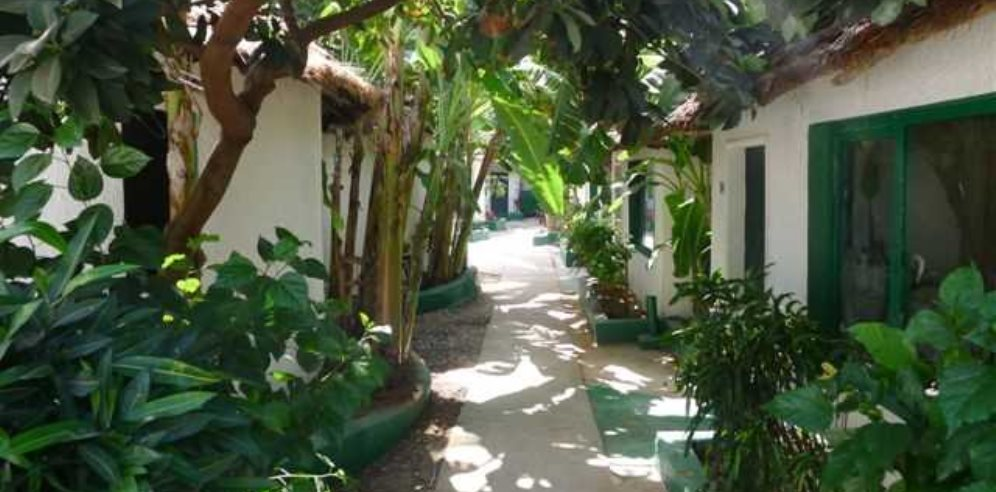 Lush gardens surrounding rooms at African Village