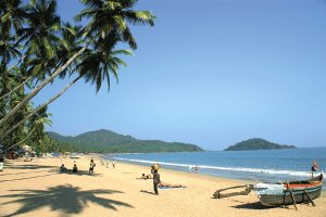 Tropical beach of Palolem, South Goa - Mikhail Nekrasov