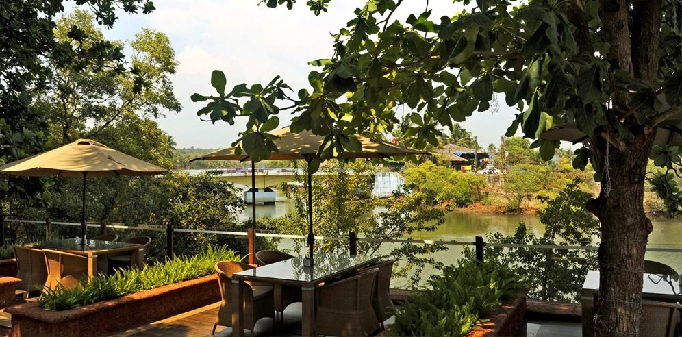 Grounds at Acron Waterfront Resort, Baga River, North Goa