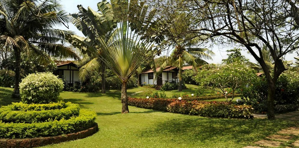 Lush gardens at Chalston Beach Resort, Calangute, North Goa