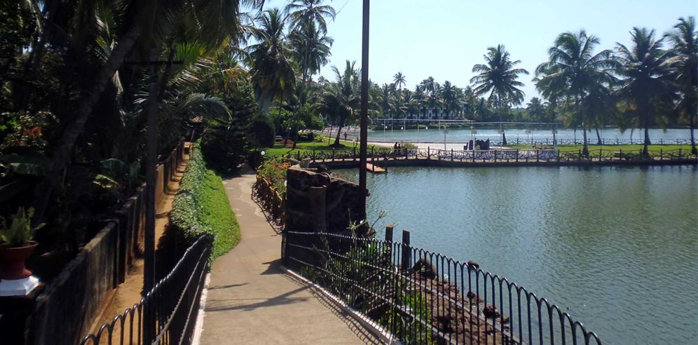 Beautiful lakes at Marinha Dourada, Arpora, North Goa