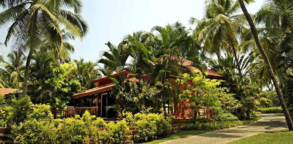 Beautiful Grounds at Vivanta by Taj Holiday Village, Sinquerim, North Goa