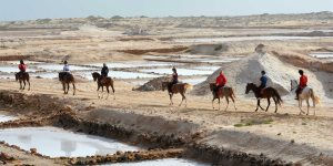 Horse Riding on Sal with Seven Horse Excursions - Santa Maria