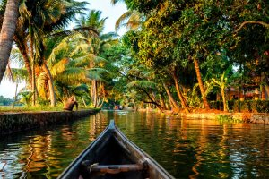 Kerala backwaters tourism travel in canoe boat. Kerala, India - Dmitry Rukhlenko | Shutterstock