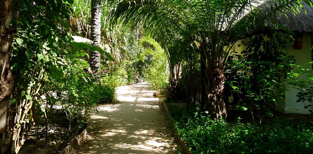 Tropical gardens at La Paillote in Casamance, Senegal