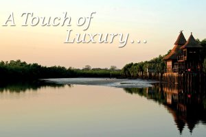 Enjoy a touch of luxury with The Gambia Experience