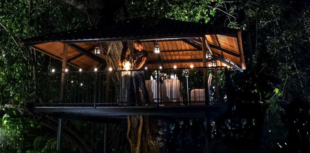 Treehouse Dining at Alila Diwa, Majorda, South Goa