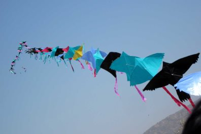 International kite festival, India - pradeep kumar chatte…| Wikimedia Commons