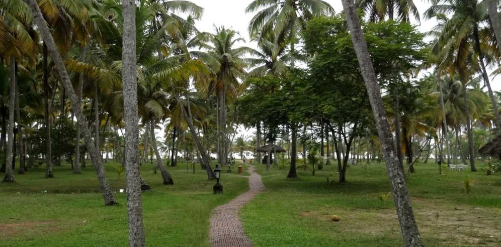 Marari Beach Resort, Marari, Kerala