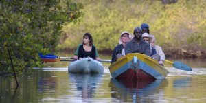 Tanji Kayaking excursion, The Gambia