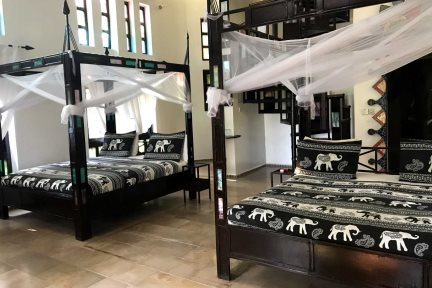Jungle Lodge with twin beds at Mandina Lodges