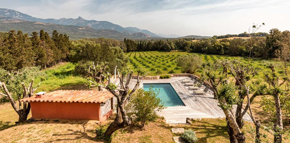 Villa Bicu Rossu, Pool and surroundings